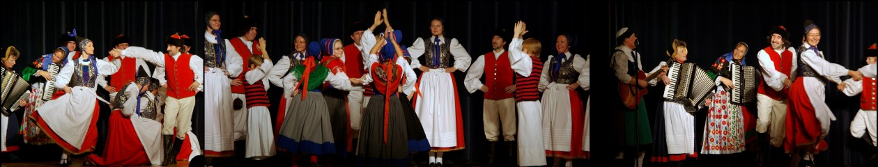Tanz- und Späldeel Leba Erlangen e.V.